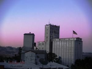 petaluma mill 2008